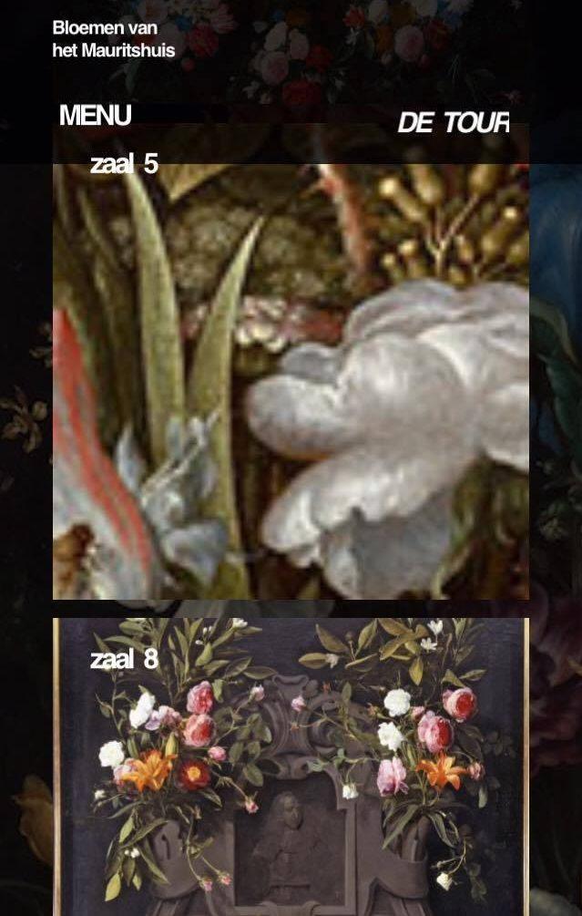 bloemeninhetmauritshuis-app